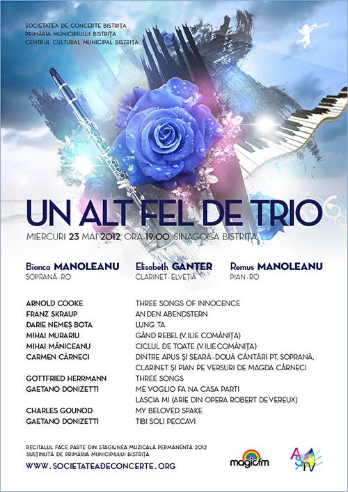poster_manoleanu_web