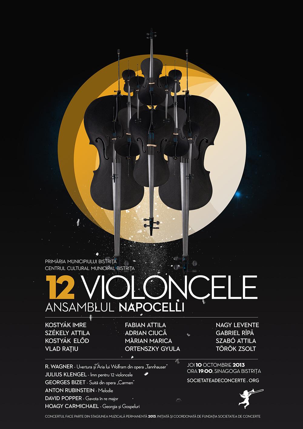 poster_12_violoncele_2013_web