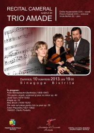Recital cameral susținut de Trio AMADÉ