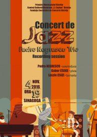 Anulat! Concert de jazz – Pedro Negrescu Trio.