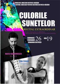 Recital extraordinar – Culorile sunetelor